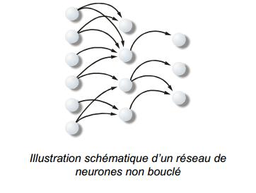photo réseau de neurones